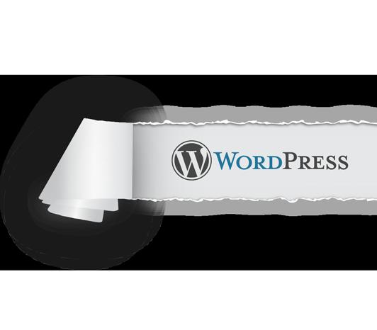 wordpress-torn