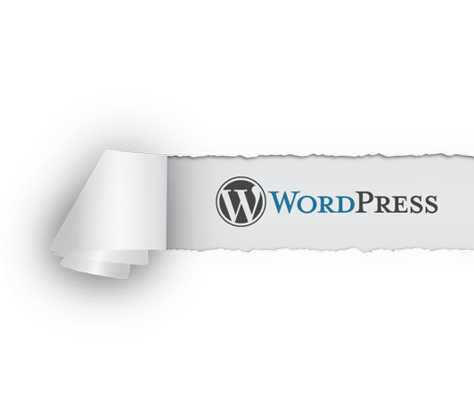 wordpress-torn